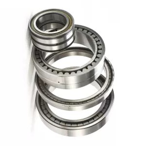 Ceramic Deep Groove Ball Bearing 6004 6000 6002 6004 6006 6008 6010 6020 6030 6200 6202 6210 6220 6230 6300 608 626